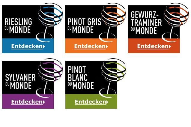 Slovenskí vinári úspešní na Les Grands Concours du Monde 2015 v Štrasburgu